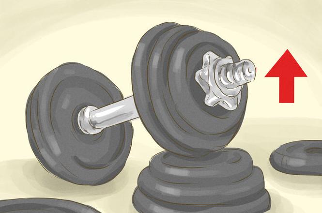 Poids entraînement de musculation