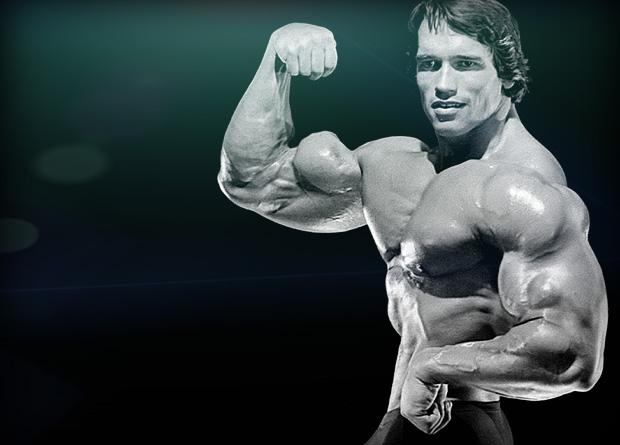 Programme de musculation pour les bras